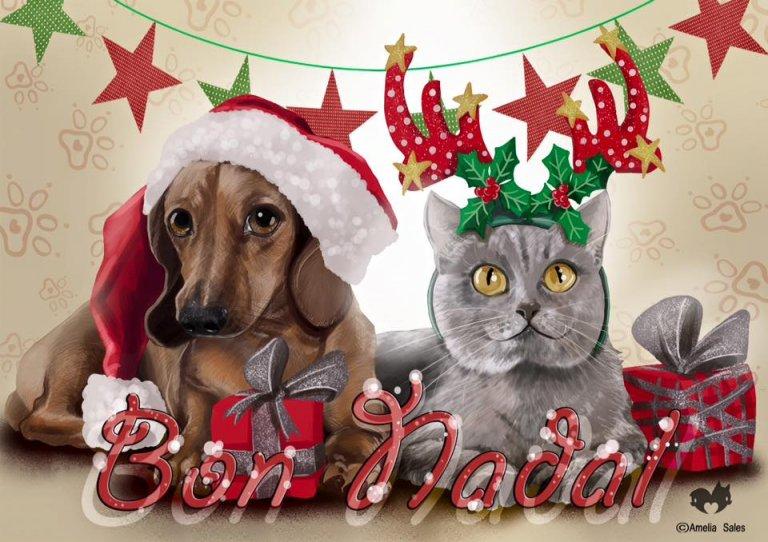 Navidad en Veu Animal